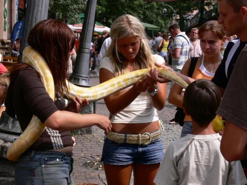 Za piątaka można pobawić się wężem. Największe zainteresowanie wczasowiczek.