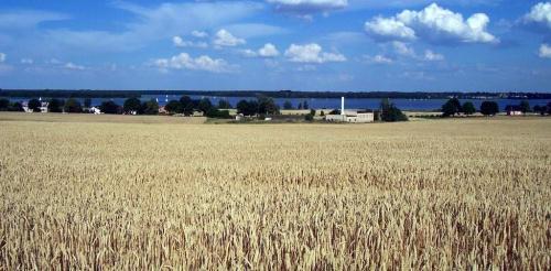 Panorama jeziora powidzkiego