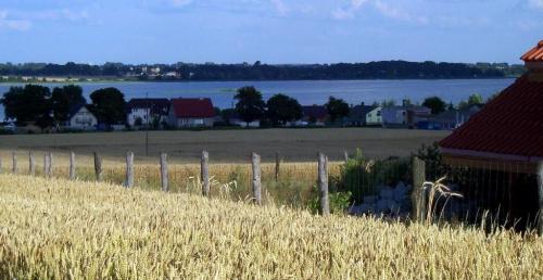 Widok z Powidza na jezioro. W tle na horyzoncie widać kominy z Konina (lewa strona zdjęcia) oraz zaczątki tworzącej się wyspy.