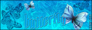 #sygnatura #grafika #motyl #butterfly
