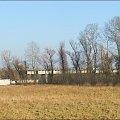 Jaroszyn - budowa obwodnicy #Jaroszyn #obwodnica #budowa #szosa