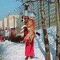 Latający pies #amstaf #ast #Pies #skok