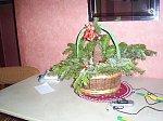 http://images3.fotosik.pl/310/464d80b840eaf281m.jpg