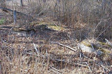 Bylice - nieczynny cmentarz ewangelicki