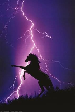 #koń #burza #błyskawica