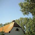 bocki Bornheim #bociany #bornheim #gniazdo #obserwacje
